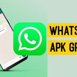 Scarica WhatsApp APK v2.21 Gratis per Android (2021)